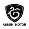 ASSUN MOTOR PTE LTD