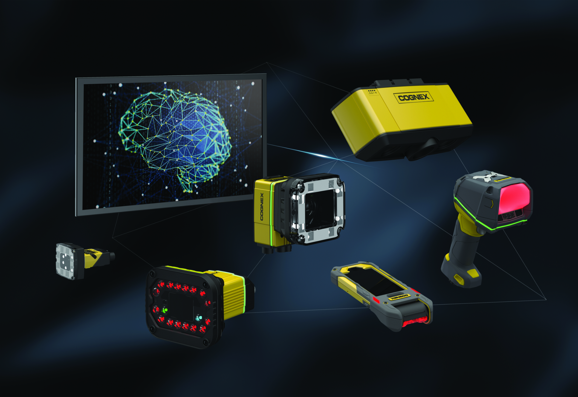 COGNEX INTERNATIONAL