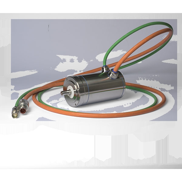Servomotori in acciaio inossidabile AKMH