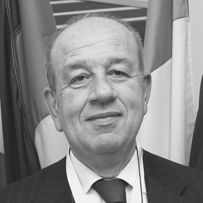 Sergio  Vellante